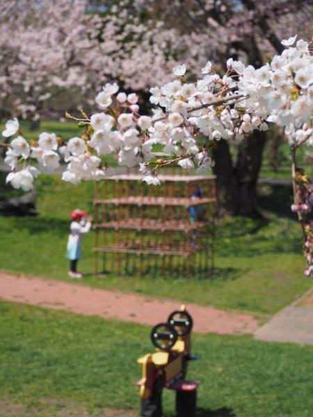 オニウシ公園の遊具