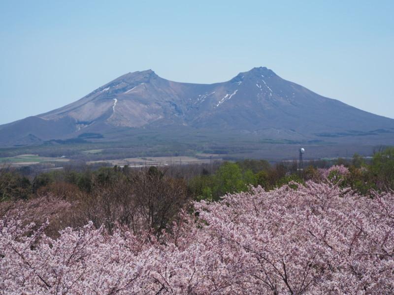 森町オニウシ公園から眺める駒ケ岳