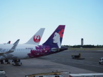 ハワイアン航空 新千歳ーホノルル便 子連れフライトレビュー