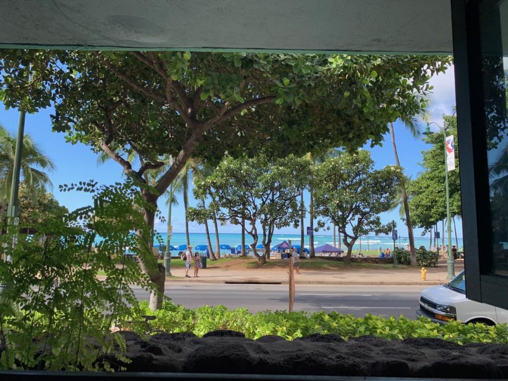 エッグスンシングスワイキキビーチ店からの眺め