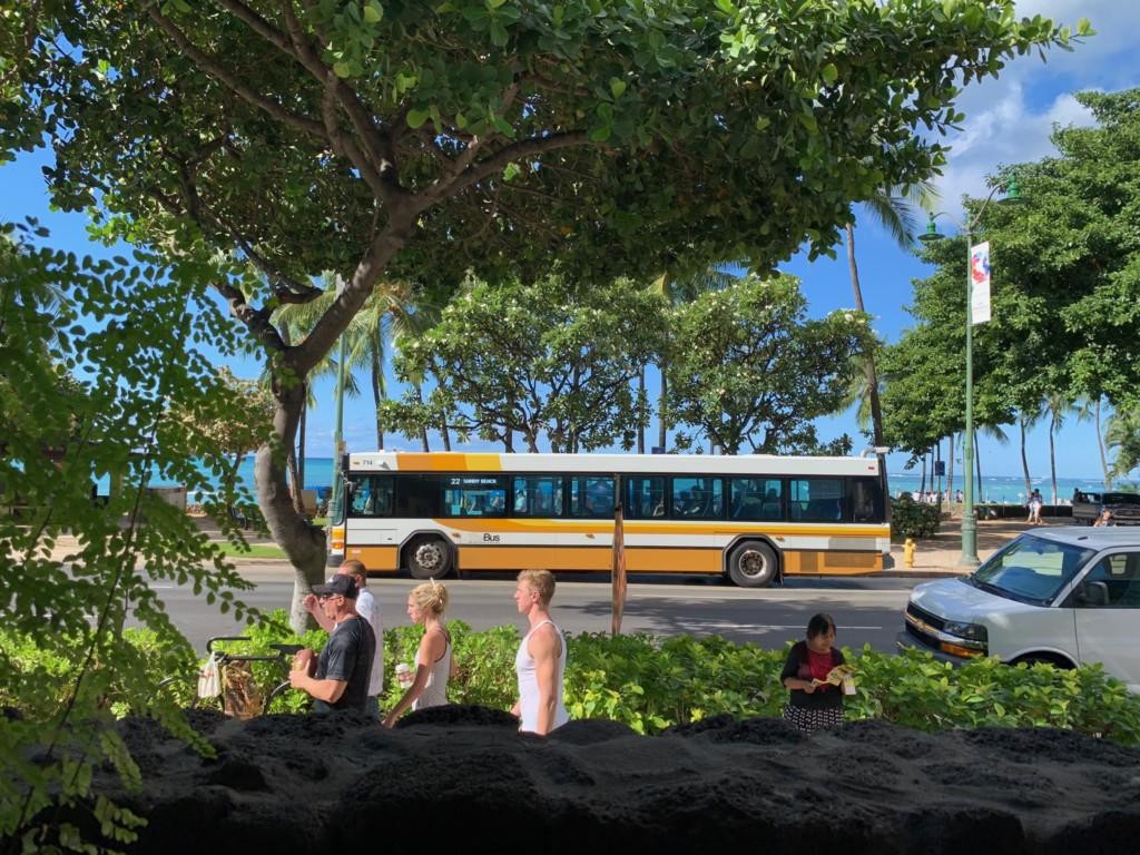 エッグスンシングスワイキキビーチ店の窓からの景色